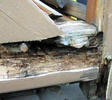 Holzsanierung mittels Epoxidharz